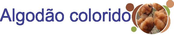 produtos_algodao